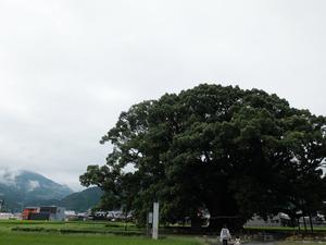 2015831181313.JPG